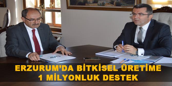 Erzurum'da bitkisel üretime 1 milyonluk destek