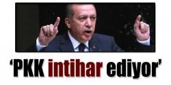 PKK intihar ediyor!