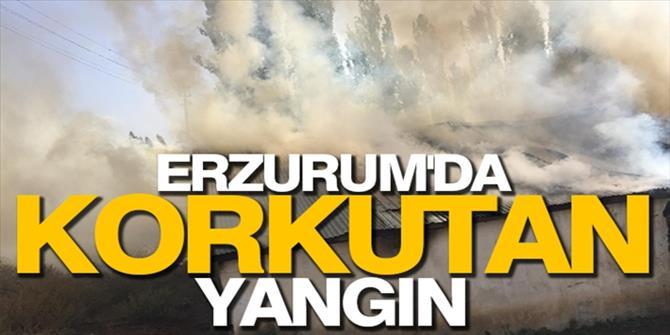 Erzurum'da hayvanların rızkını yaktılar