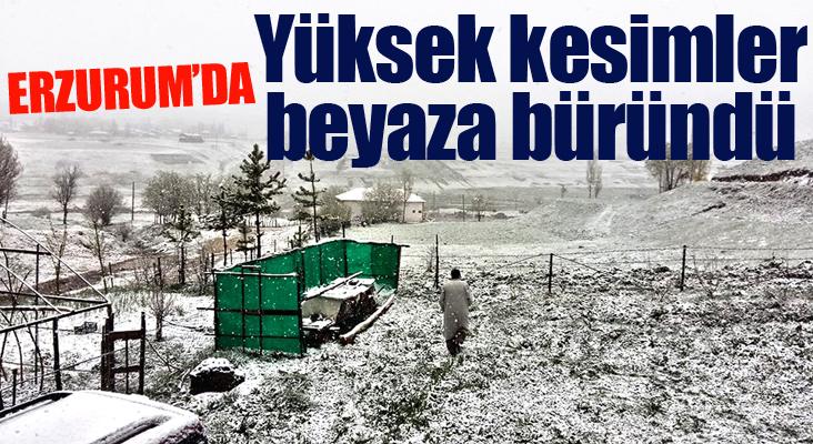Erzurum'un yüksek kesimlerinde kar yağışı etkili oldu