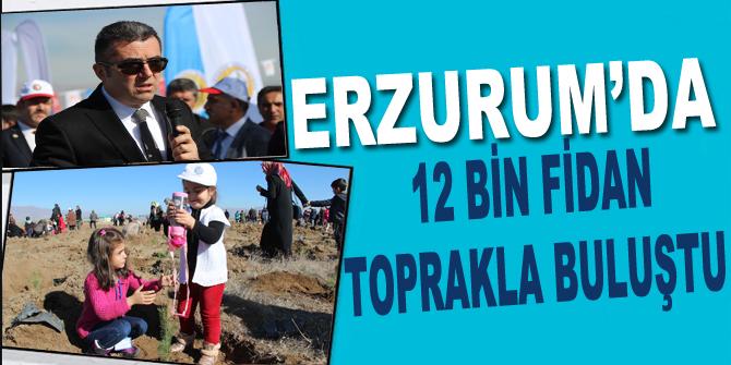 Erzurum'da 12 bin fidan toprakla buluştu