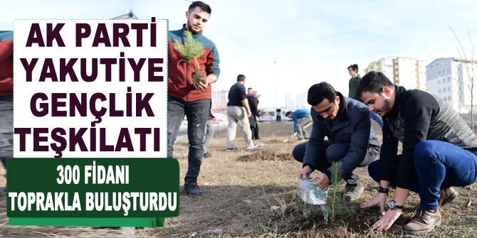 Ak Parti Yakutiye Gençlik teşkilatı 300 fidanı toprakla buluşturdu
