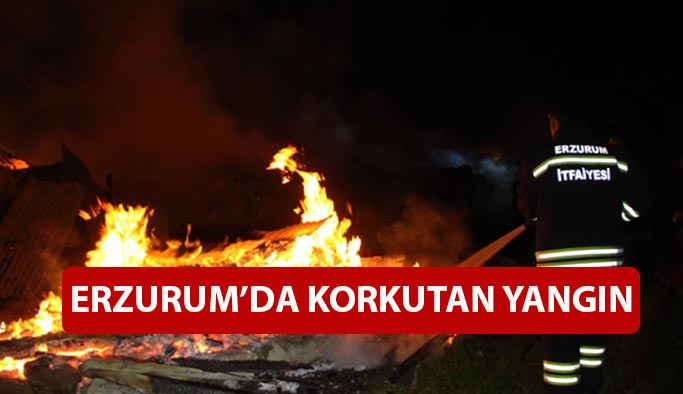 Erzurum'da yangın: 2 ev ve ahır kül oldu