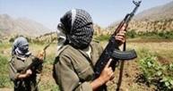 İşadamının oğlu PKK'ya katıldı