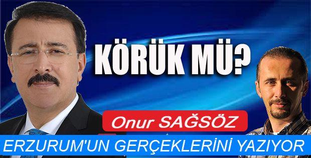 Erzurum'un Milletvekili bakın ne istedi!