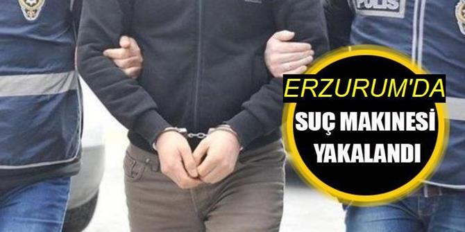 """""""Dolandırıcılık"""" ve """"hırsızlık""""tan sabıkalı cezaevi firarisi hükümlü Erzurum'da yakalandı"""