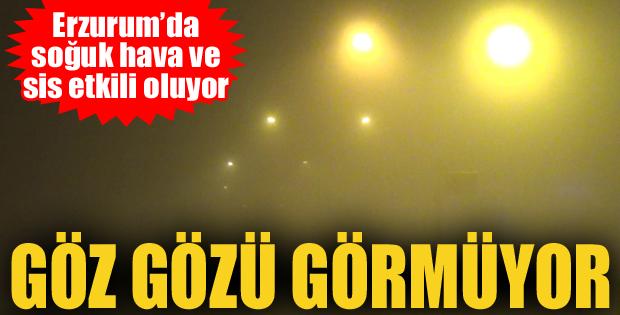 Erzurum'da sis ulaşımı aksatıyor