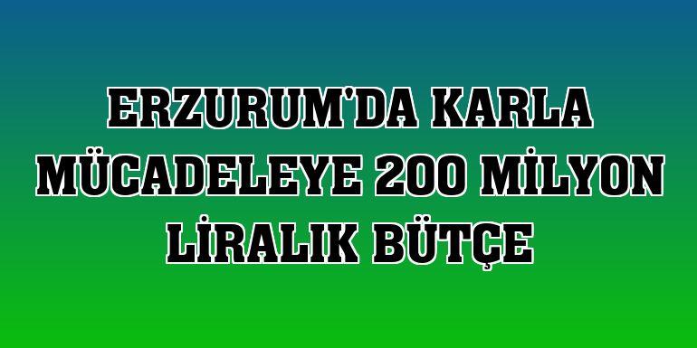 Erzurum'da karla mücadeleye 200 milyon liralık bütçe