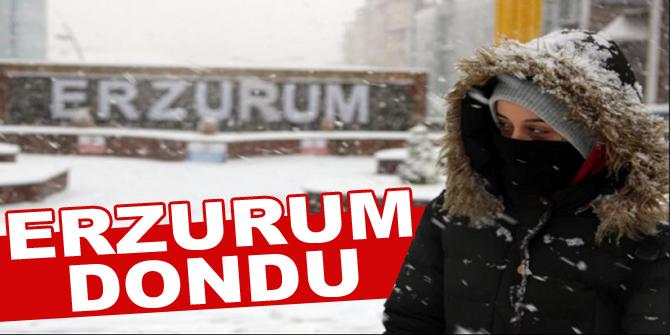Erzurum'da hayat dondu