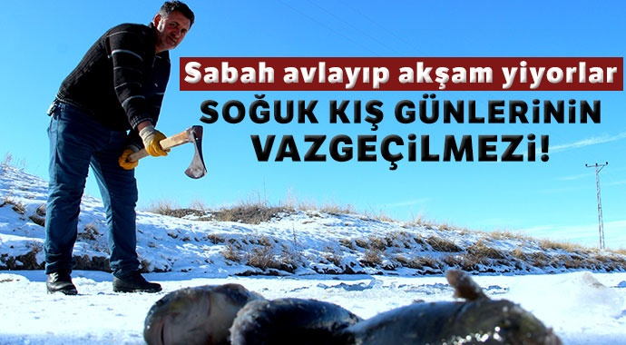 Soğuk kış günlerinin vazgeçilmez aktivitesi: Eskimo usulü balık avı
