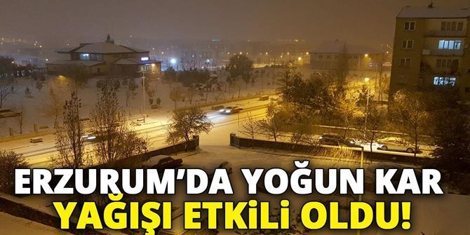 Erzurum'da kar yağışı etkili oldu