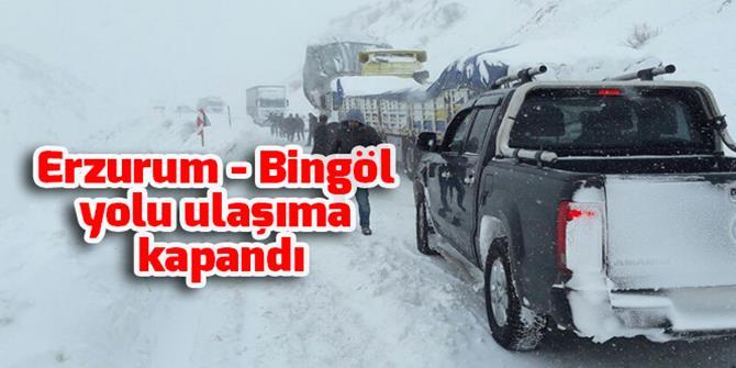 Bingöl-Erzurum kara yolu kar ve tipi nedeniyle ulaşıma kapandı