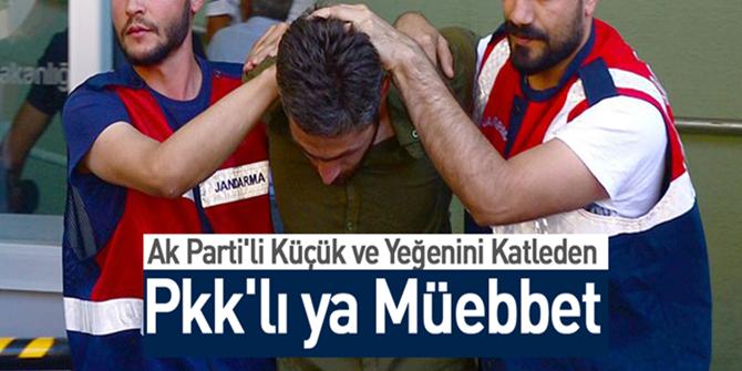 AK Parti'li Küçük ve yeğenini katleden PKK'lı teröriste ağırlaştırılmış müebbet istemi