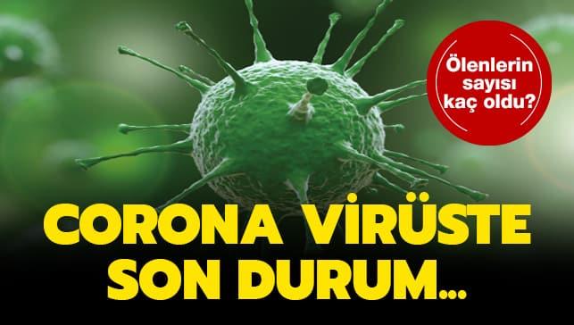 Bodrum'da corona virüsünden iki ölüm daha