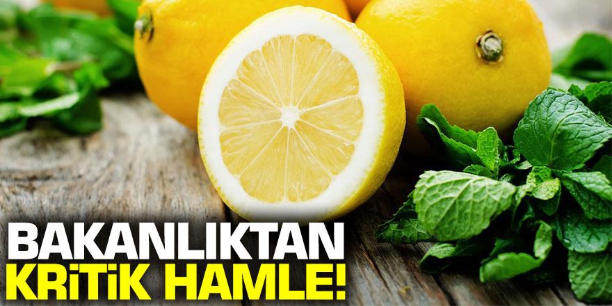 Bakanlıktan kritik limon hamlesi! Yürürlüğe girdi