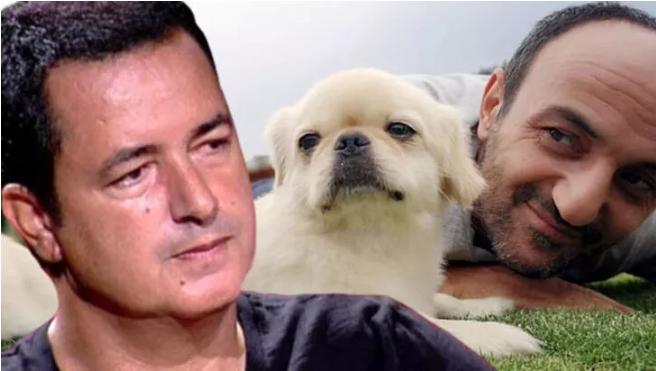 Acun Ilıcalı'dan Ersin Korkut'un ölen köpeği hakkında ilk yorum