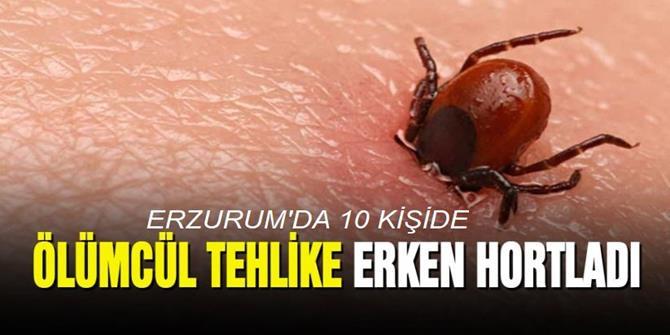 Erzurum'da 10 kişiye Kırım Kongo Kanamalı Ateşi tanısı konuldu