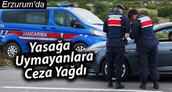 Erzurum'da kısıtlamaya uymayanlara ceza