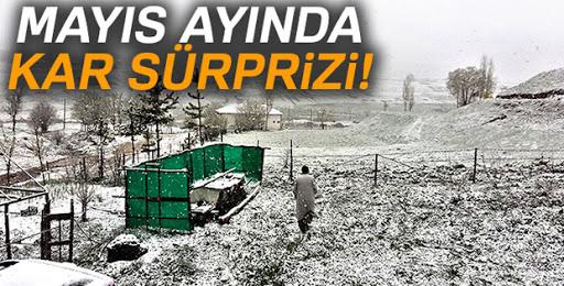 Erzurum'da mayıs ayında kar sürprizi