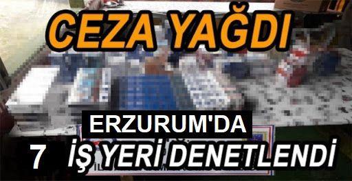 Erzurum'da 7 işyerine para cezası