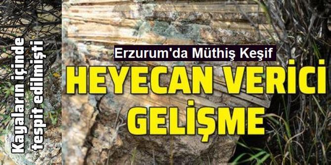 'Türkiye'nin çatısı' geçmişte deniz kenarı çıktı