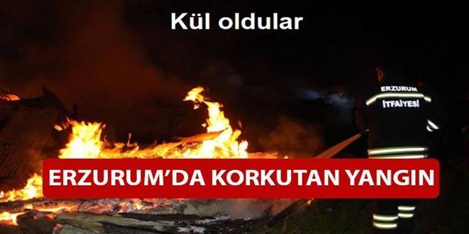 Erzurum'da 5 ahır yandı