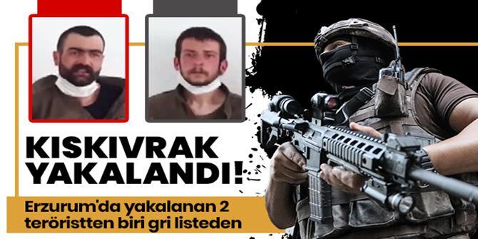Erzurum'da teröre darbe üstüne darbe