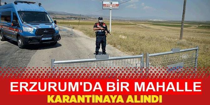 Erzurum'da 1 mahalle Kovid-19 nedeniyle karantinaya alındı