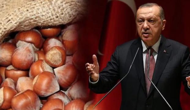 Cumhurbaşkanı Recep Tayyip Erdoğan fındık alım fiyatlarını açıkladı