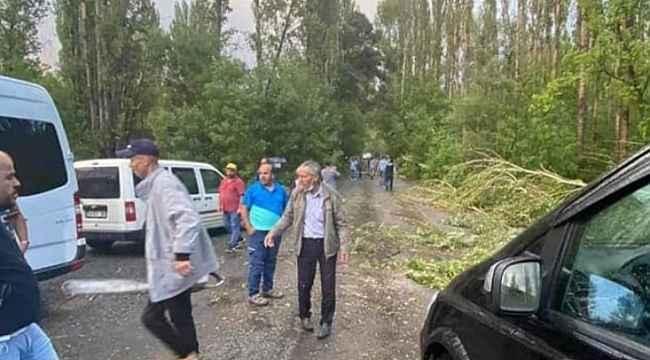 İspir'de Kasırga onlarca ağacı kökünden söktü
