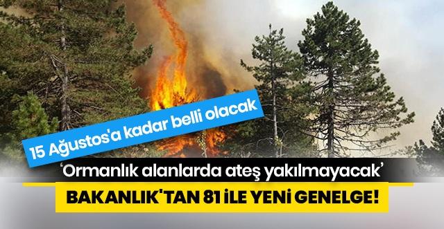 İçişleri Bakanlığı, 81 il valiliğine 'Ormanlık alanlarda ateş yakılmaması' konulu genelge gönderdi