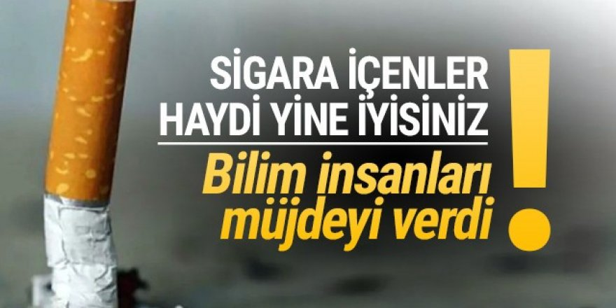 Ünlü bilim insanı sigara içenlere müjdeyi(!) verdi!