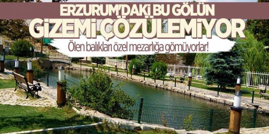 Erzurum'da ki bu gölün gizemi çözülemiyor!
