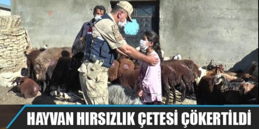 Erzurum'da çaldılar, Iğdır'da yakalandılar