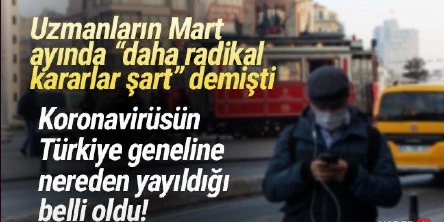 ''Salgın İstanbul'dan Anadolu'ya yayıldı''