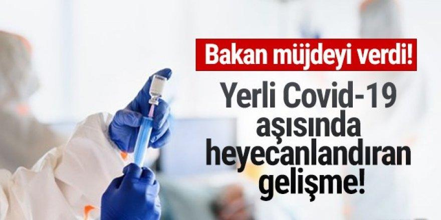 Türkiye'nin Covid-19 aşısında heyecanlandıran gelişme!