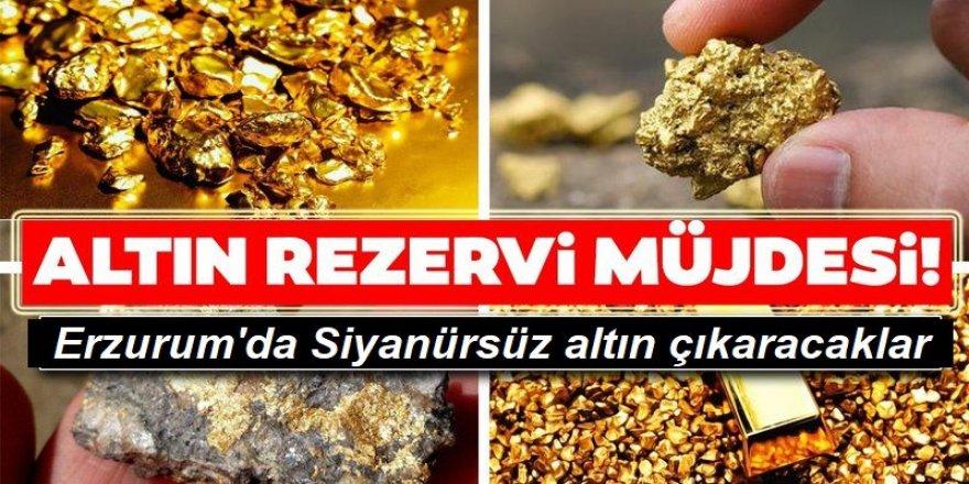 Erzurum'da Siyanürsüz altın çıkaracaklar