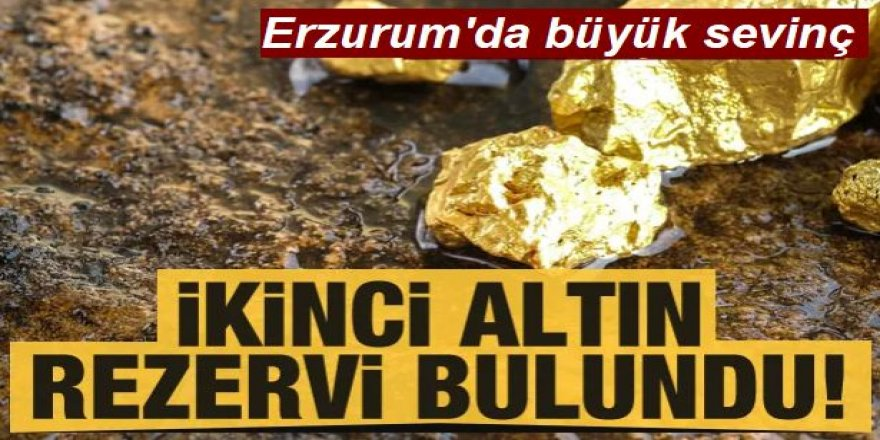 Erzurum'da ikinci Altın rezervi bulundu