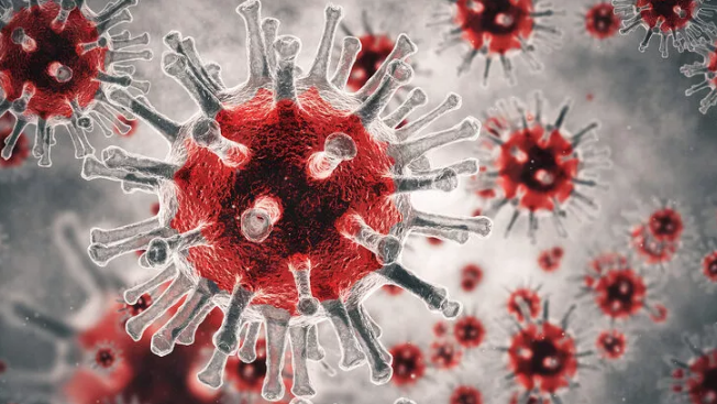 Bilim insanları uyardı! Koronavirüs benzeri yeni virüs: SADS-CoV