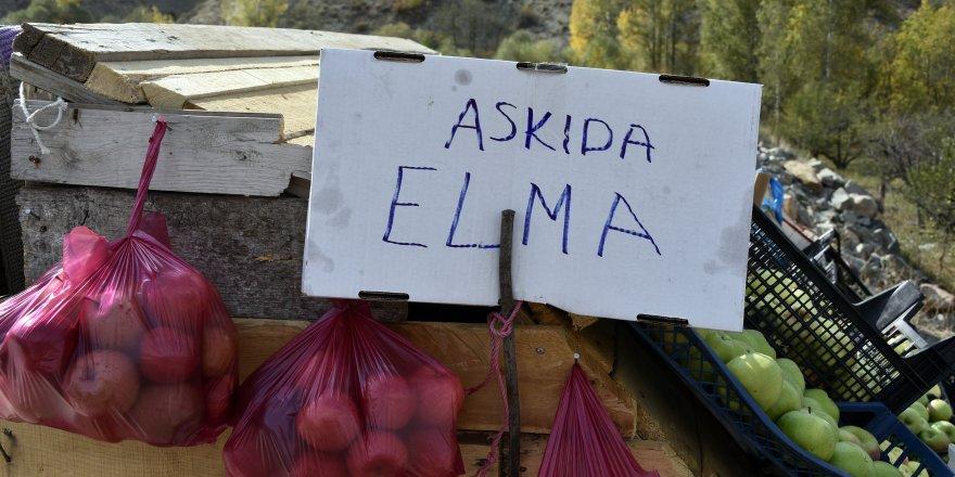 Karayolu kenarında 'Askıda Elma'