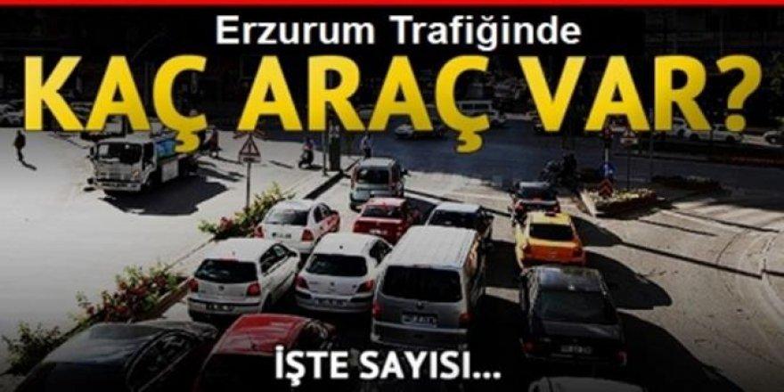 Erzurum araç sayısı artış seyrinde