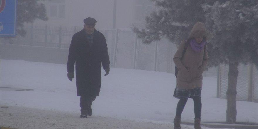 Erzurum ile Ağrı'da soğuk hava ve sis etkili oldu