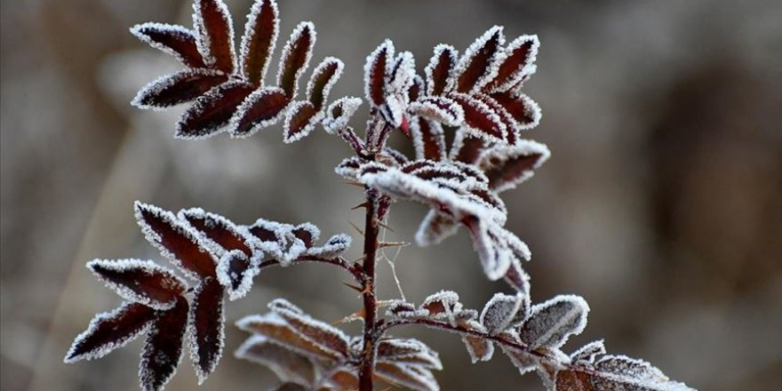 Doğu Anadolu'da gece en düşük sıcaklık Ağrı'da ölçüldü