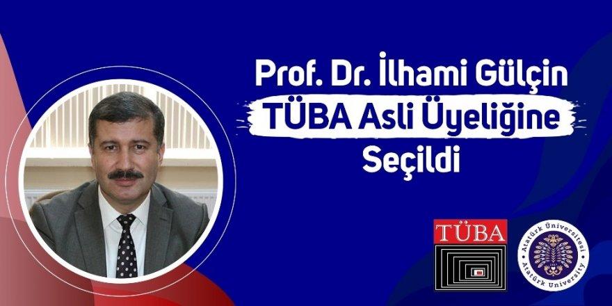 Prof. Dr. İlhami Gülçin Tüba asli üyeliğine seçildi