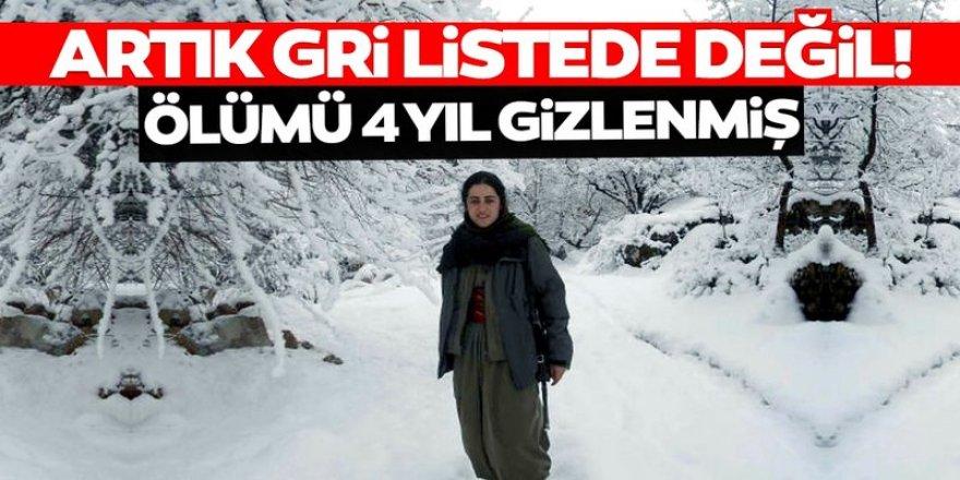 PKK, Rukiye Çekiç'in ölümünü 4 yıl gizlemiş!