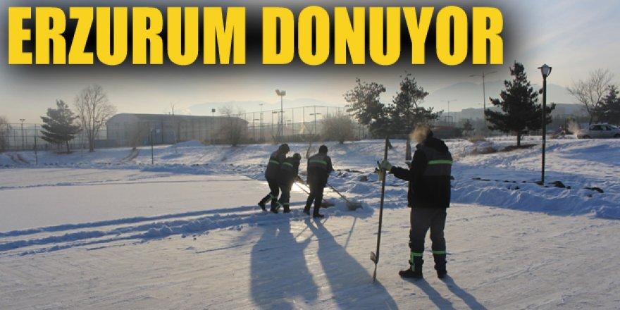 Erzurum'da dondurucu soğuklar yaşamı olumsuz etkiliyor