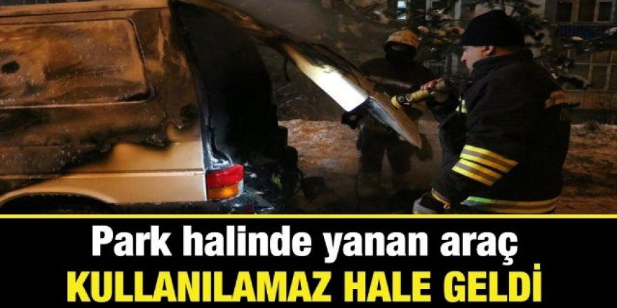 Erzurum'da araç cayır cayır yandı