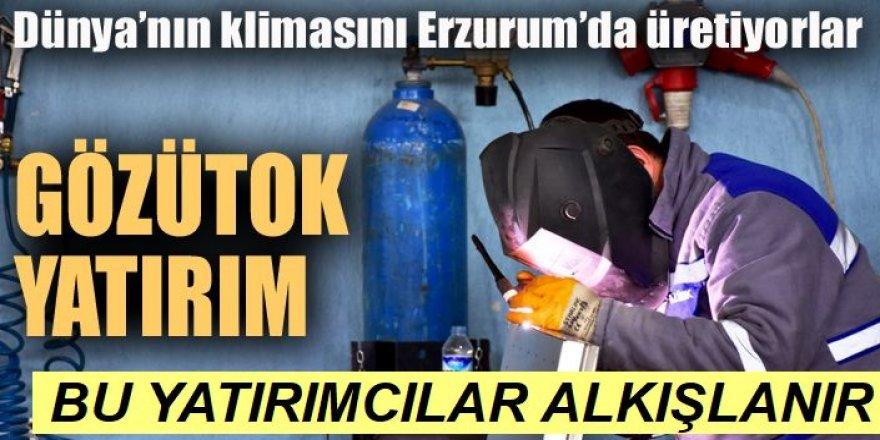 Dünya'nın klimasını Erzurum'da üretiyorlar