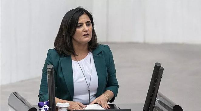 Teslim olan teröristler ifadelerinde HDP Ağrı Milletvekili Taşdemir'in Gara'ya gittiğini anlattı