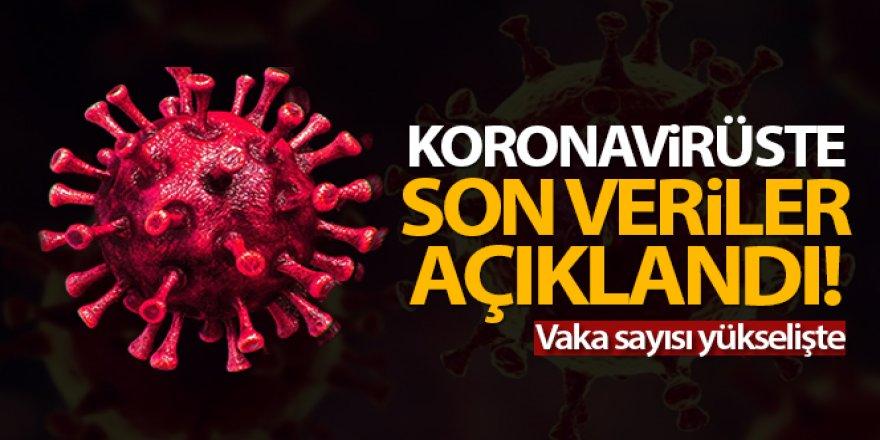 24 saatte 11.770 koronavirüs vakası tespit edildi